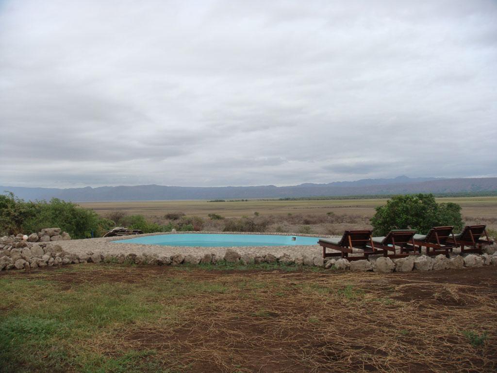 swimming pool at manyara wildlife safari camp