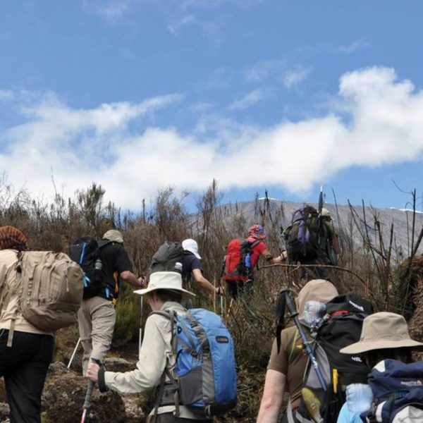 6 Day Lemosho Route Kilimanjaro Climbing